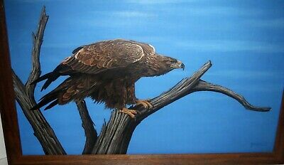 Signed Old Master BIRD OF PREY FALCON PAINTING - EXTRAORIDNARY WORK