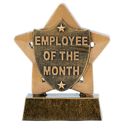 Personalised Engraved Mini Star Employee of the Month Great Player Team Award