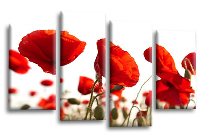Floral Rose Wall Art Pink White Grey Canvas Flowers Split Picture Panel Set E