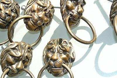 6 LION pulls handles Small heavy  SOLID BRASS old style bolt house antiques 79mm