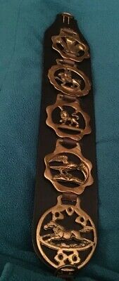 Lot of 5 Brass Harness Medallions Mounted on Leather