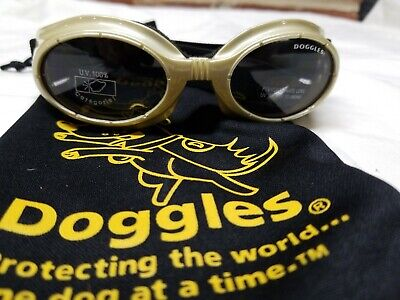 Doggles - Gold Frame with Clear Lens Eye Goggles  ~ Medium?