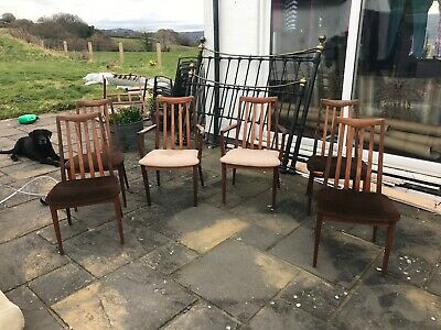 G plan dining chairs x 6 with 2 carvers