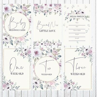 Baby Milestone Cards, 4x6 Photo Prop, 42 Cards, Sweet Violet