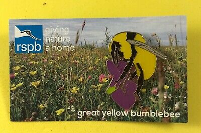 RSPB Scotland GNaH Pin Badge On Card - Great Yellow Bumblebee Bee 🐝