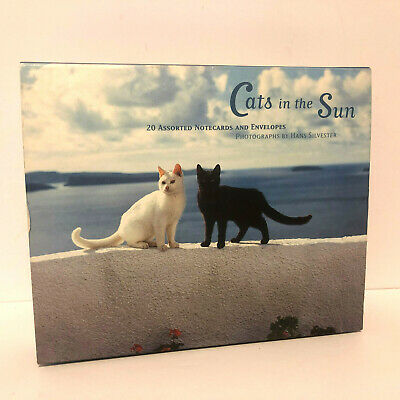 Cats in the Sun Hans Silvester 20 Blank Cards