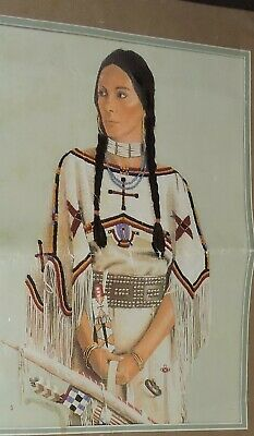 Rare Native American Sioux Lady Maiden Traditional Dress USA Kit Embroidery Easy