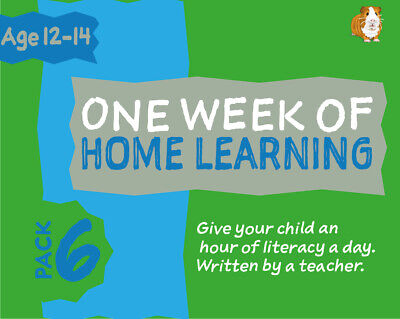 One Week Of Literacy Work For Home Learning (12-14 years) Pack 6
