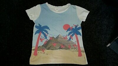 Boys Size 7 Seed T-shirt