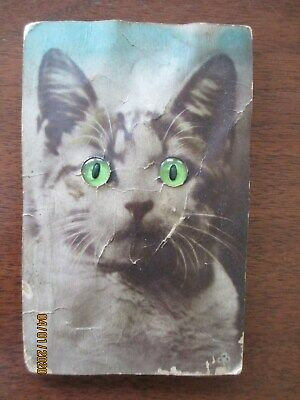 "XX Rare Antique German "" meowing "" Cat postcard with glass like eyes"