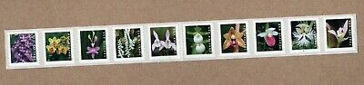 2020 Wild Orchids forever stamp mint coil strip of 10 With plate number