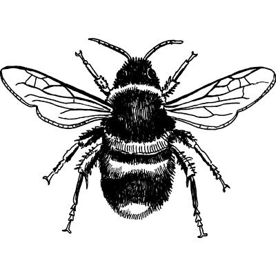 'Bee' Rubber Stamp (RS005829)