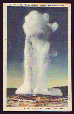 Yellowstone NATIONAL PARK Old Faithful Geyser Haynes 1954 Postcard