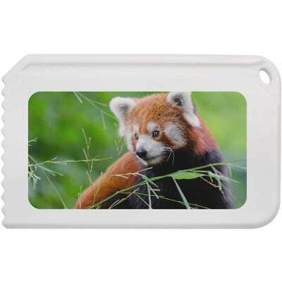 'Red Panda' Plastic Ice Scraper (IC00006083)