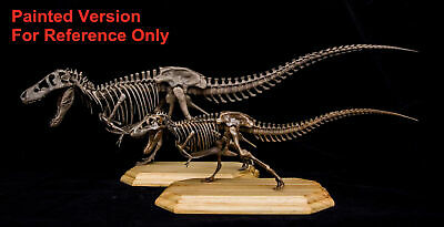 Tyrannosaurus Rex Sue Skeleton Dinosaur Animal Trex Collector Toy Gift Unpainted