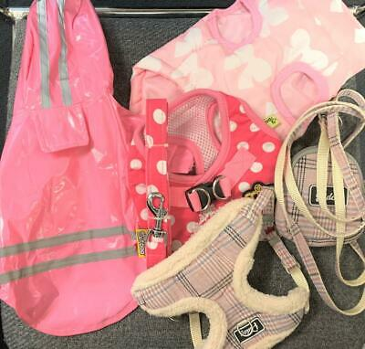 Dog/Cat Clothes And Leash - Girl - Small