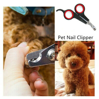 Pet Dog Cat Rabbit Bird Guinea Pig Claw Nail Clippers Trimmers Scissors Easy LH