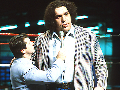 20 Pro Wrestling DVDs: The Best of ANDRE THE GIANT!