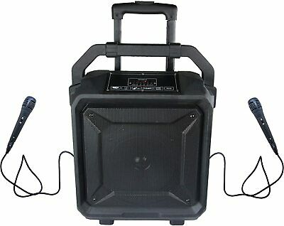 Karaoke Speaker Party w/ 2 wired Microphones, Bluetooth, Guitar In, USB, SD, FM