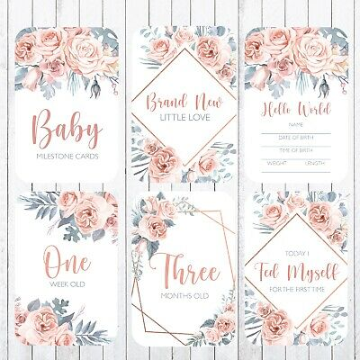 Baby Milestone Cards, 4x6 Photo Prop, 40 Cards, Sweet Rose