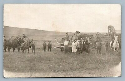 Farm Harvesting Scene Horse Drawn Cart Antique Real Photo Postcard Rppc
