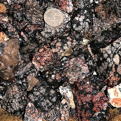 2000 Carat Lots of SNOWFLAKE Obsidian Rough - Plus FREE Faceted Gemstone