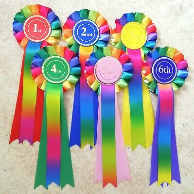 1st - 6th Place Rainbow Rosettes Dog Show, horse pony gymkhana NHS prize