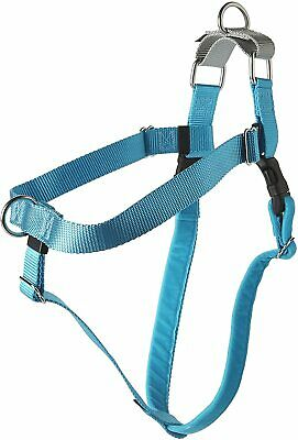 """2 Hounds Design HN XL TQ Freedom No-Pull Harness Only, (1"""" Wide), Turquoise, X-L"""