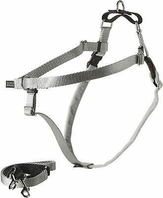 """2 Hounds Design PK 58MD SL Freedom No-Pull Dog Harness with Leash, (5/8"""" Wide),"""
