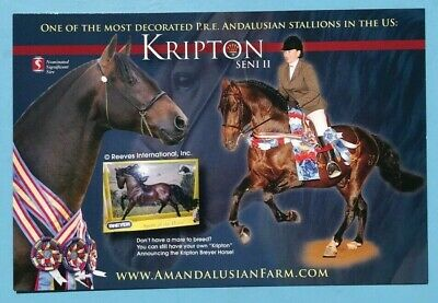 Andalusian Horse Ad Card Kripton