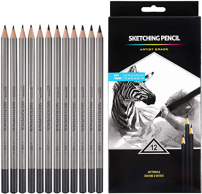 Professional Drawing Sketching Pencil Set For Beginners & Pro Artists 12 Pieces