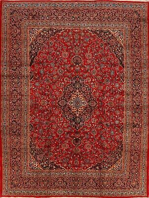 Vintage Medallion Hand-Knotted Floral Traditional Area Rug Oriental Carpet 10x13