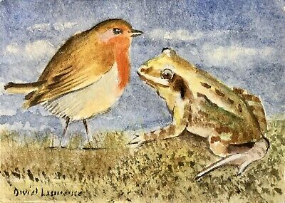 Robin and a Frog - original ACEO watercolour by David Laurence.