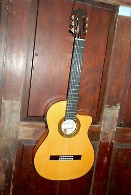 Cordoba 55FCE Honey Amber Nylon String Acoustic Electric Fusion Guitar w/Case