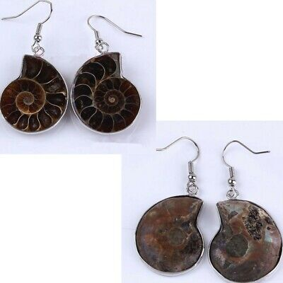 1Pair Natural Ammonite Slice Shell Gemstone Dangle Hook Earrings