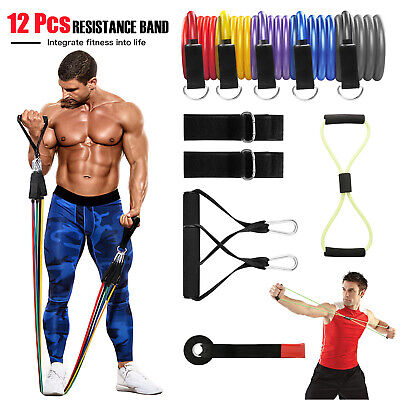 12 Pcs Resistance Bands Set Workout Bands With Metal Clips Handles Ankle Strap