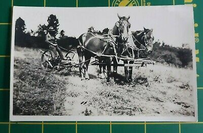 RPPC Postcard Man Plowing Field With old farm plow and team of 2 horses
