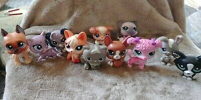 LITTLEST PET SHOP MIXED - 11 Animals - Cats Dogs Bunny Lamb.  So cute!!!