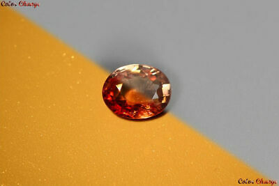 0.980 Ct UNIQUE RARE 100% NATURAL EARTH MINED AAA++ TOP COLOR CHANGE GARNET GEM!