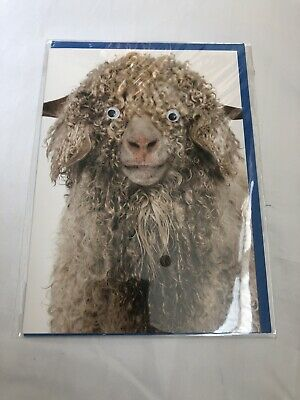 Birthday Card With Moving Eyes
