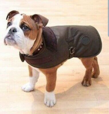 dog raincoat barbour
