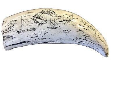 Faux Whale Tooth Scrimshaw