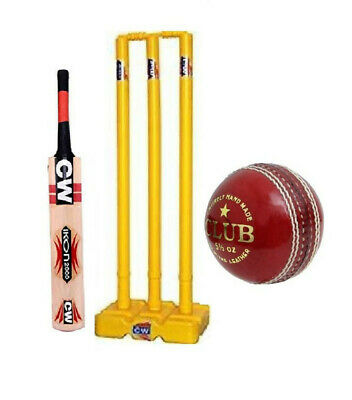 Details about  /Tournament Large Size Backpack With Full Size Bat For Adult Senior Cricket Set