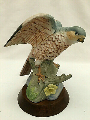 """Vintage Robin BIRD by ARDCO Dallas  Hand Painted Porcelain 6"""" Figurine Wood Base"""