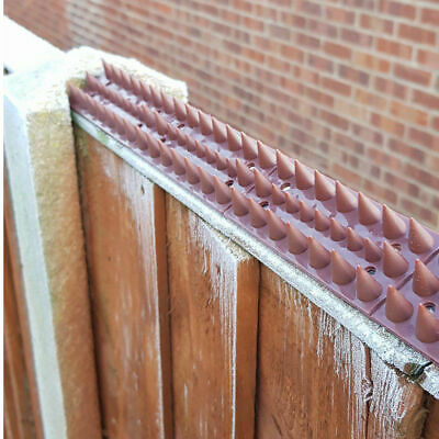 Fence Wall Spikes Garden Security Intruder Bird Cat Repellent Burglar Anti Climb