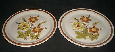 WHEAT FLOWER AUTUMN COLLECTION STONEWARE DINNER PLATE s