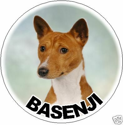 2 Basenji Car Stickers By Starprint - Automatic combined postage