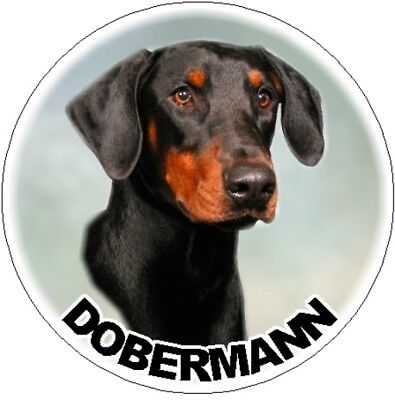 2 Dobermann Car Stickers By Starprint