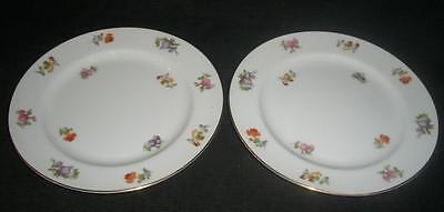 OCCUPIED JAPAN Noritake China FLORAL SALAD PLATE (s)