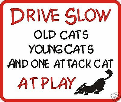 Drive Slow Attack Cat Novelty Sign
